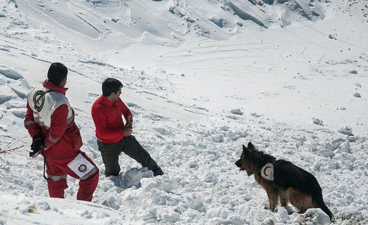 Rescue operation underway to find missing climbers in NE Iran
